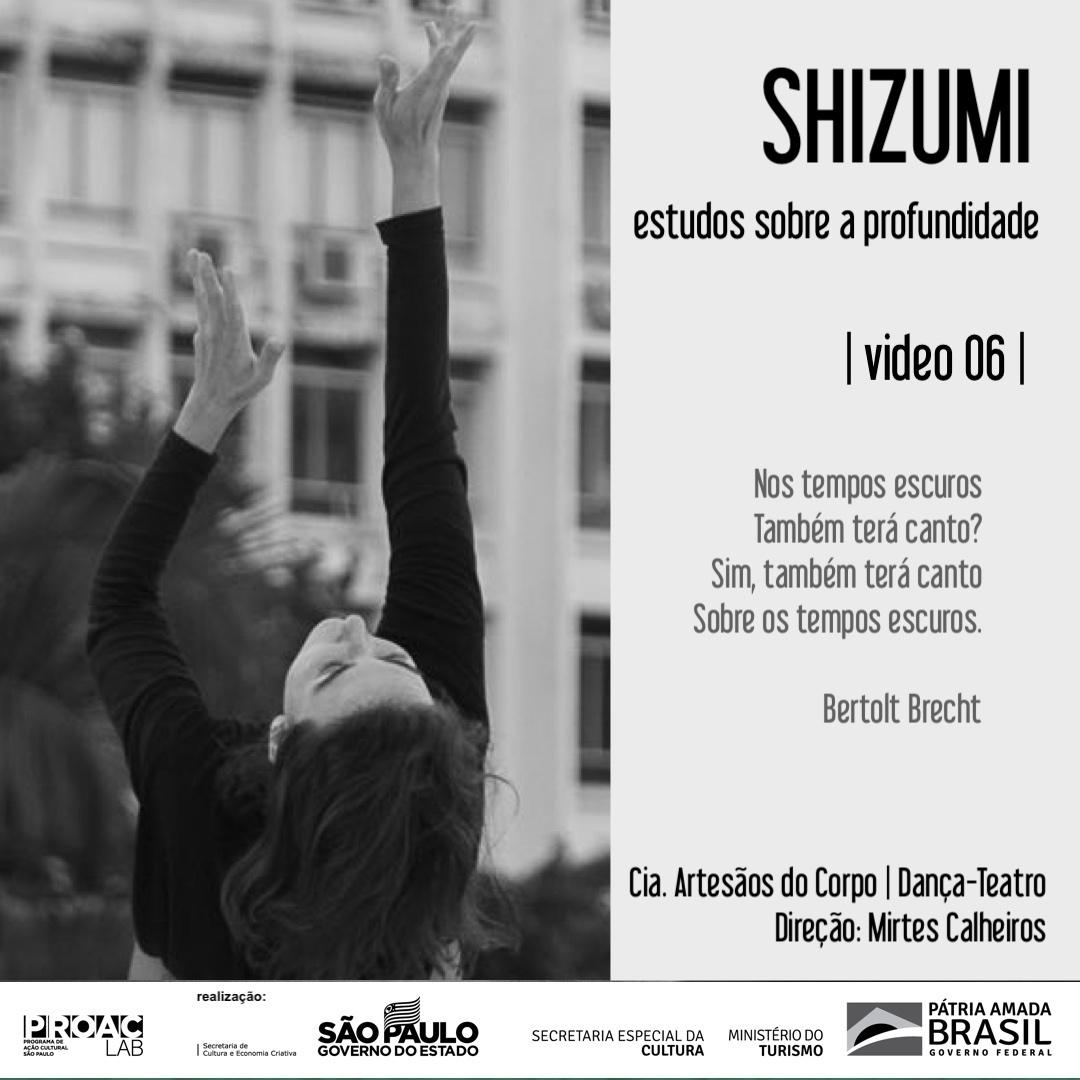 SHIZUMI 6